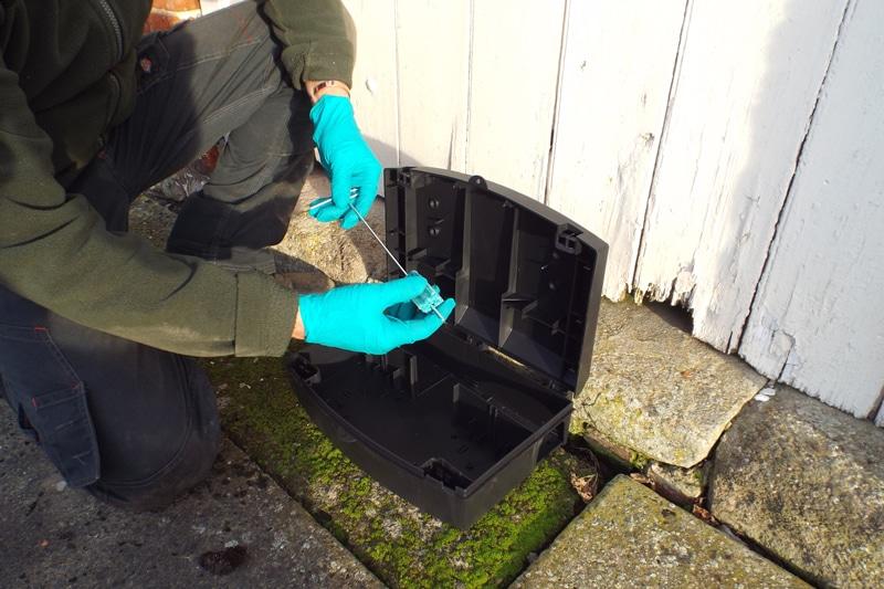 DIY or professional pest control