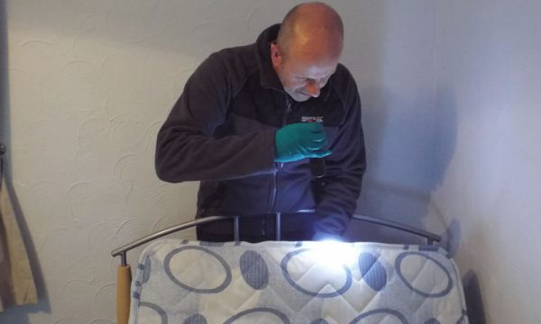 bed bug control Doncaster area