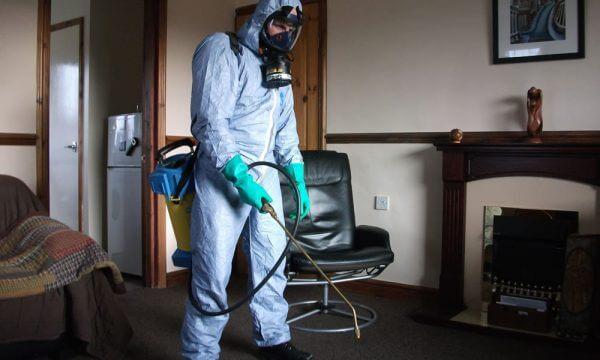 flea control Doncaster