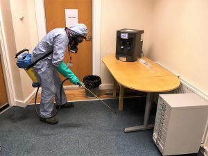Flea control in Doncaster