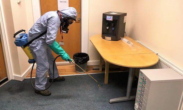 Flea control in Doncaster