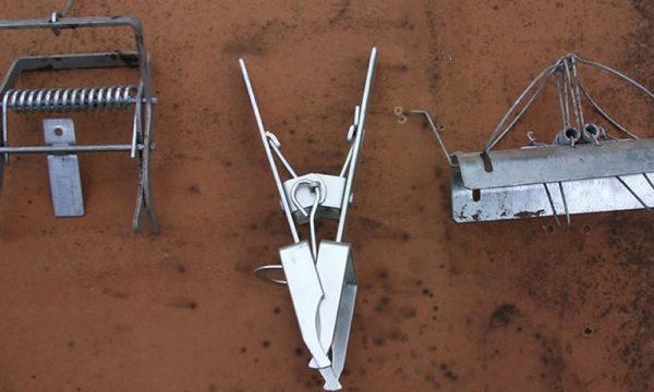 mole traps Doncaster