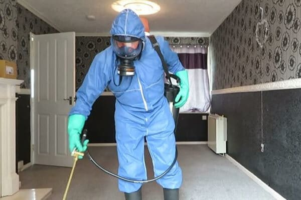 Flea fumigation Doncaster